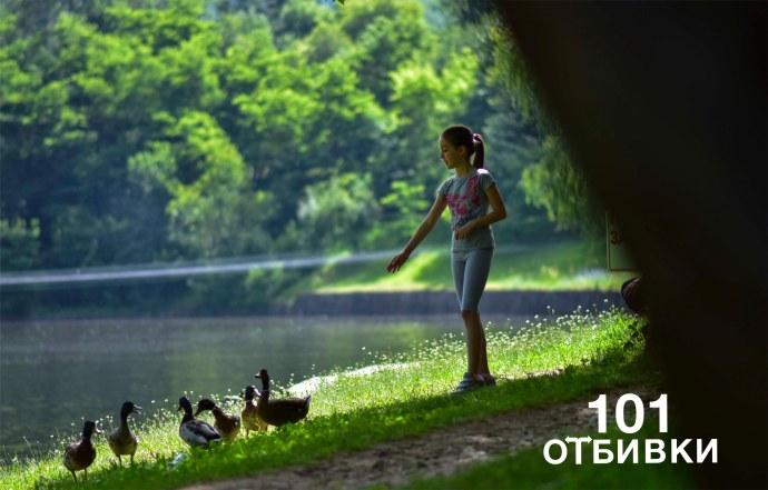 бачиново